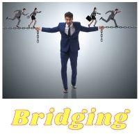 Bridging_16.jpg